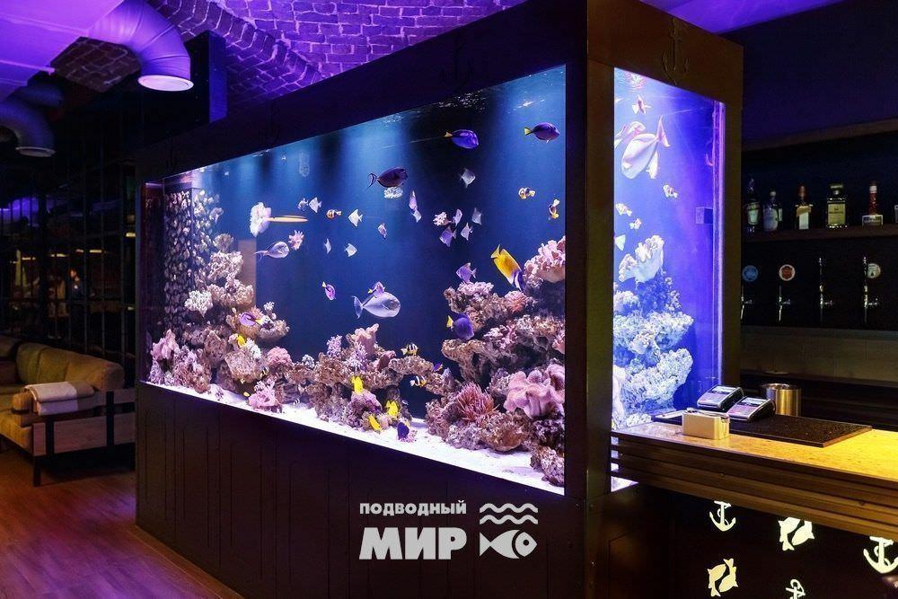 аквариум для ресторана «РЫБА МЕЧТЫ»