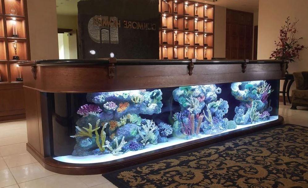 окнам придают фото аквариум барная стойка значит