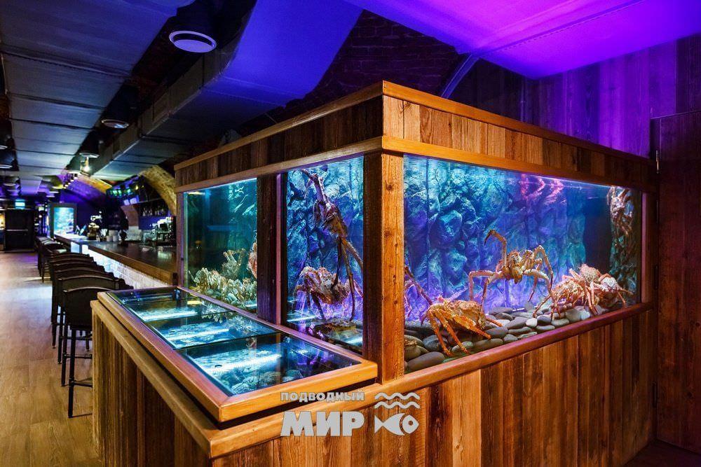 Холодноводные аквариумы